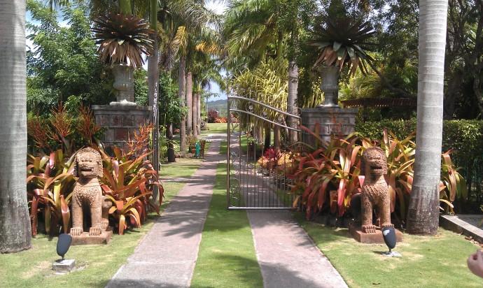Nevis botanical garden 1.jpg